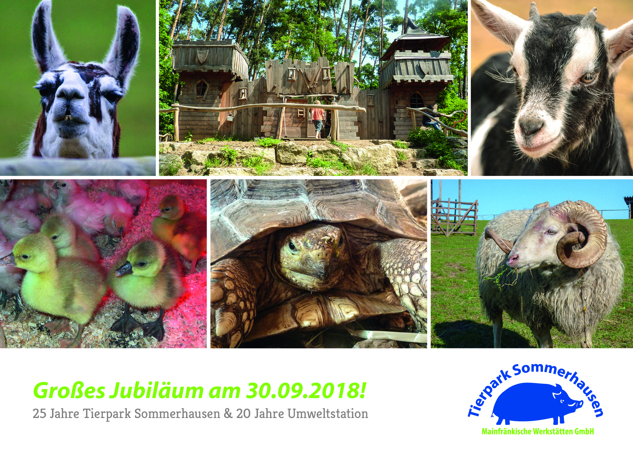 Jubiläumsfeier im Tierpark Sommerhausen